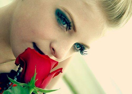 cabaret роза фото